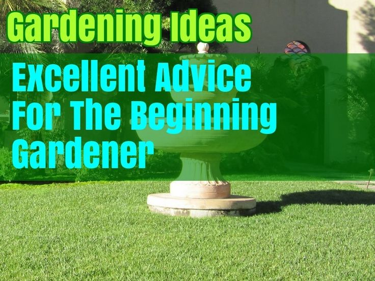 Helpful Advice And Tips On Organic Gardening – Gardening Tips