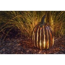 Add a fun outdoor steel pumpkin designed to stand a lone or go over your current outdoor lighting.   This pumpkin is meant to withstand the outdoor elements.   Find it here - http://www.allbackyardfun.com/patio-furniture/outdoor-accessories-and-decor/?limit=all