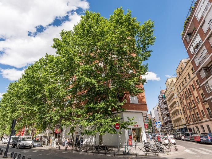 Piso En Vizcaya Palos De Moguer 150512603 Fotocasa Palos De Moguer Pales Grandes Ventanales