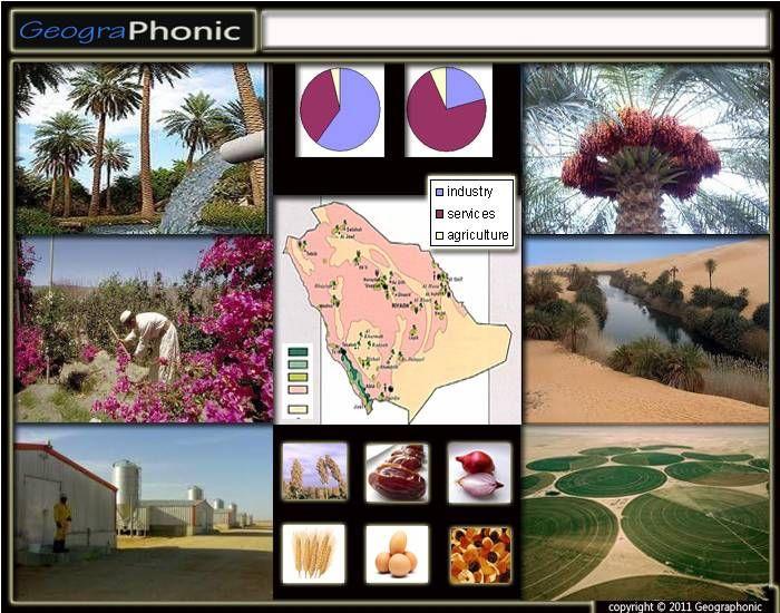 Game: Agriculture in Saudi Arabia  Saudi Arabia, #Industry, #SaudiArabia, undefined, #farm, #agriculture, #sectors, #Labour, #farming, #irrigation, #sorghum, #eggs, wheat, #central pivot, #watering, oasis, #wadi, #dates, #farms, #fertile,