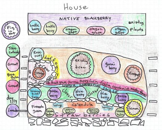 124 best images about landscape sketch on pinterest for Permaculture exemple