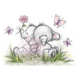 Casal de Elefantinhos