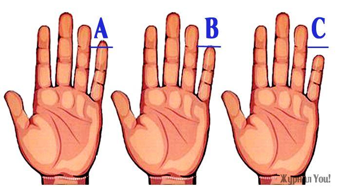 В Индии его называют палец Будды, римляне величали пальцем Меркурия, а хироманты связывают мизинец совсевозможными видами общения. Мизинец (или оба, поскольку они бывают разной длины и формы у одного…