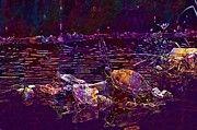 "New artwork for sale! - "" Animals Turtles Turtle Pond  by PixBreak Art "" - http://ift.tt/2v3V2dC"