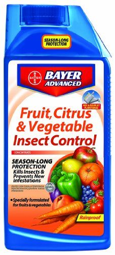 The best I've found to finally kill brown soft scale on my citrus trees! Also kills spider mites, and other common pests! Yet safe to eat the fruit! A must have for any indoor citrus plant owner!  Bayer Advanced 701520 Fruit, Citrus and Vegetable Insect Control Concentrate, 32-Ounce