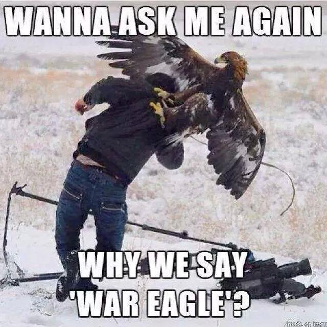 Hahaha....War Eagle!