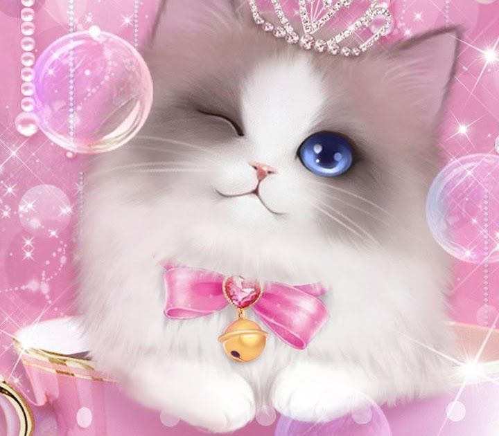Wallpaper Kucing