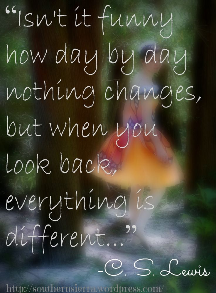 Isn't it funny how day by day nothing changes, but when you look back everything is different.