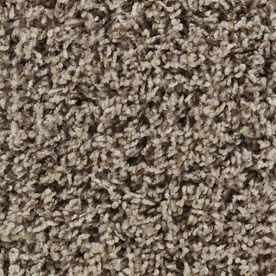 STAINMASTER�Active Family Carefree Easton Frieze Indoor Carpet