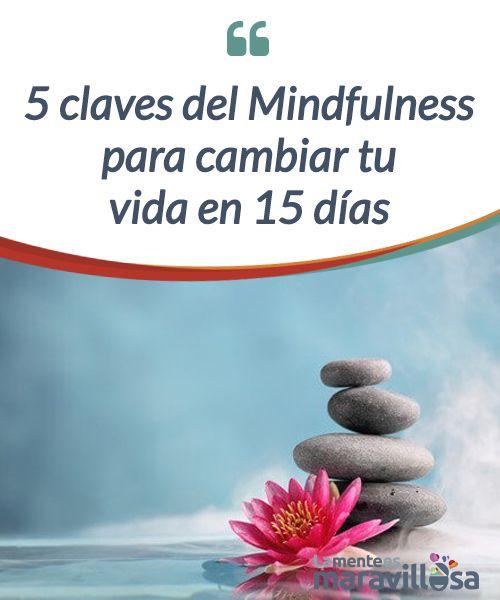 5 claves del Mindfulness para cambiar tu vida en 15 días Los grandes #cambios vienen precedidos de pequeñas sacudidas con las que cambiar poco a poco nuestra vida hacia la #felicidad: el #Mindfulness puede ayudarnos #Psicología