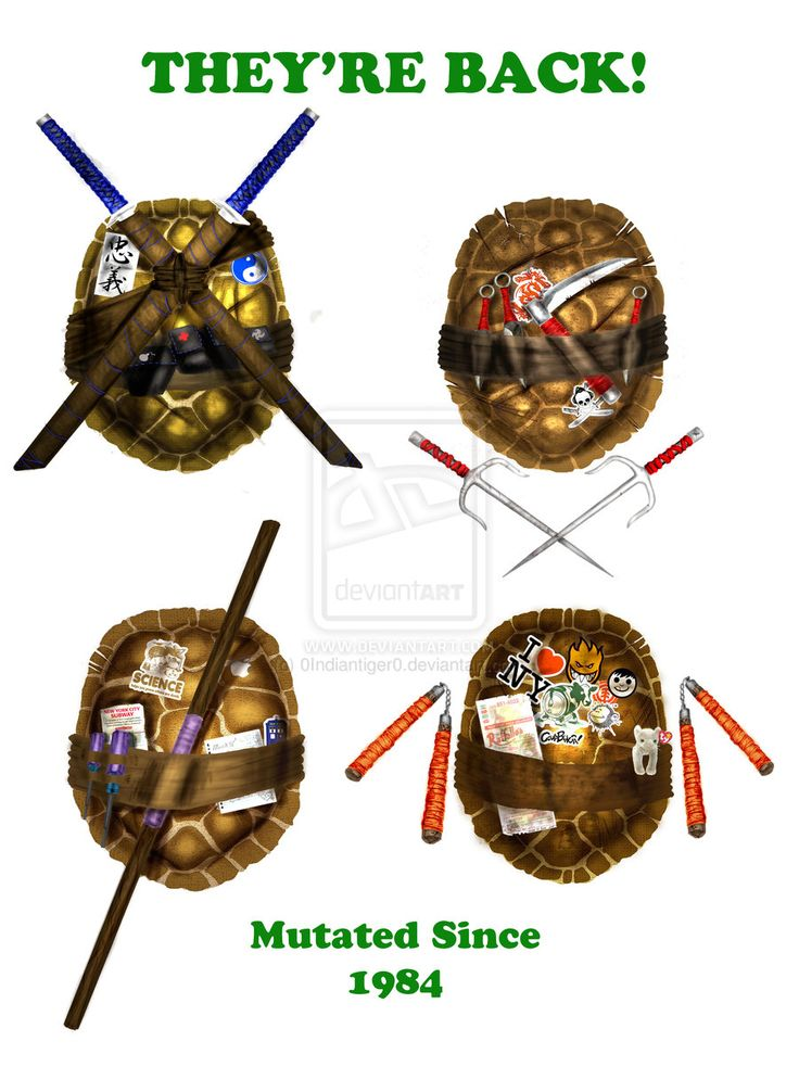 Tmnt theyre back shells by on deviantart donnies shell has a tardis sticker