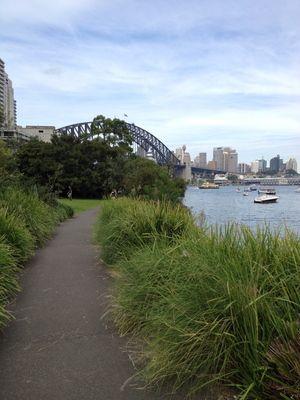 Lavender Bay to Kirribilli Harbourside Walk - Sydney