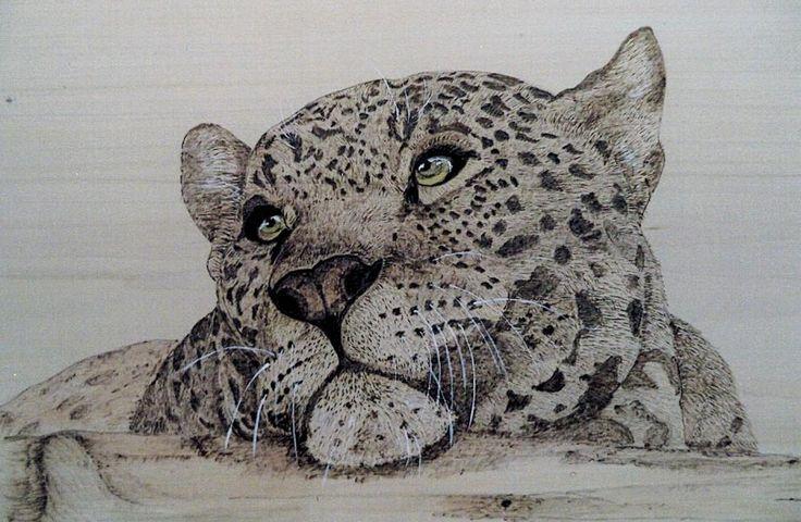 Art by Sue Bonifacio
