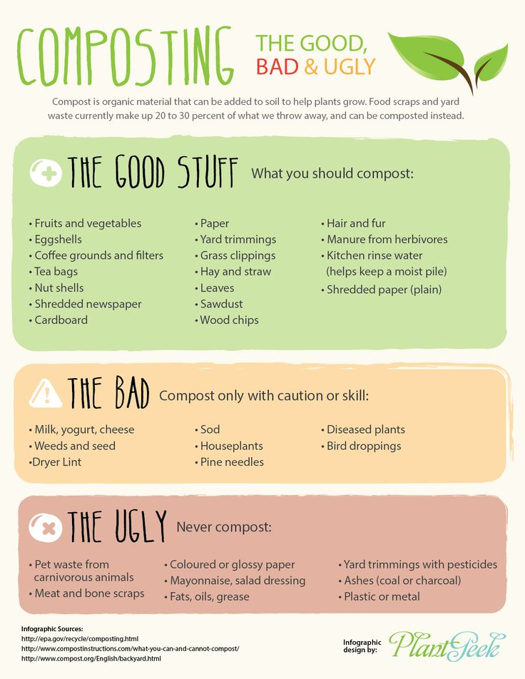 A handy compost chart infographic of tips - what you can, cannot and shouldn't compost. Print this out for your kitchen!