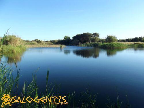 Lago della Signureddha, o della fanciulla, ottenuto da una cava di tufo dismessa in territorio di Cutrofiano.