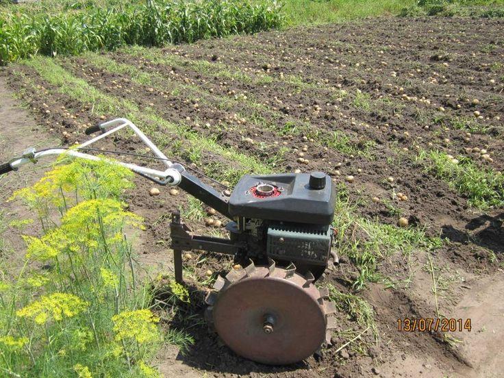 Как копать картошку мотокультиватором мини мотоблоком без лопаты