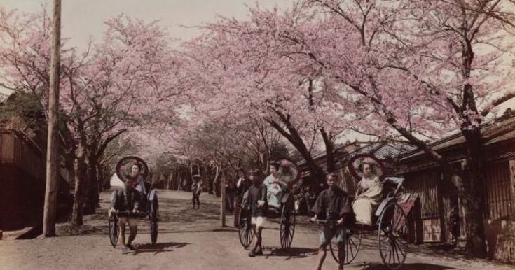 これらの写真は、明治時代になったばかりの1868年から1870年頃に撮影された、港町・横浜の姿だ。海上交通の要衝として、重要な役割を果たした横浜。今では大都市になっている横浜の、開港当時の姿がこれらの写真だ。モノクロ写真に絵師が色を付けたものは、外国人向けのおみやげとして販売されており、ハーバード大学図書館がコレクションとして収蔵している。 %Slideshow-770565% 【明治の写真関連の...