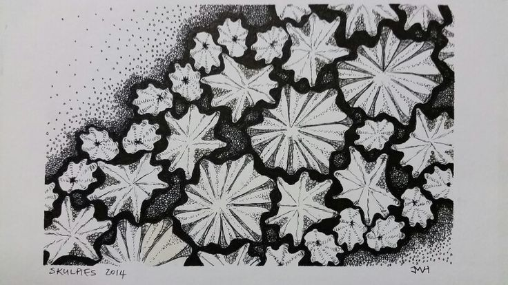 Zentangle sea shell pointillism
