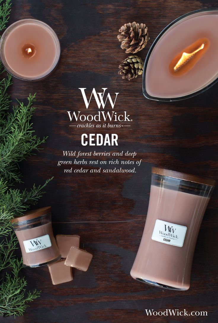 Wild forest berries and deep green herbs rest on rich notes of red cedar wood and sandalwood musk. WoodWick® candles use a natural, wooden wick that creates the soothing sound of a crackling fire #cedar #woody #wood #fragrance #woodwick #candle #crackles