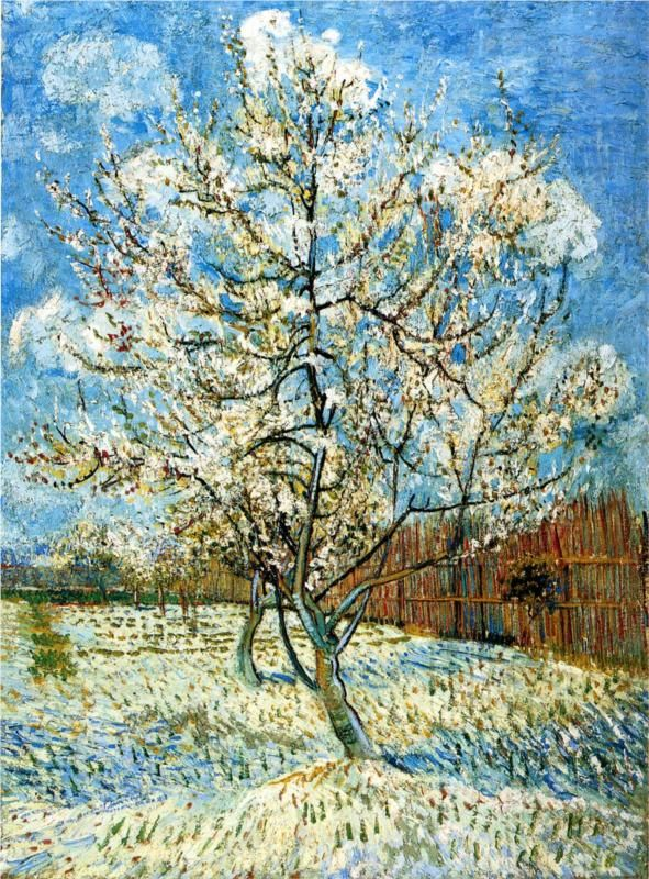 Peach Trees in Blossom, 1888  Vincent van Gogh