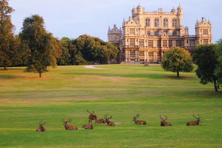 Wollanton Hall and Deer Park, Nottinghamshire, England