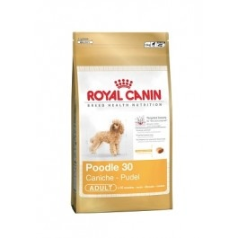 Royal Canin Caniche Adulto 30