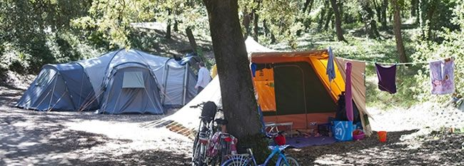Oléron les Chênes Verts Indigo Campsite, France | Caravan Holiday Oléron, Oléron island camping, rent tent, pitch campsite Oléron, holidays Charentes Maritimes campsite | www.camping-indigo.com