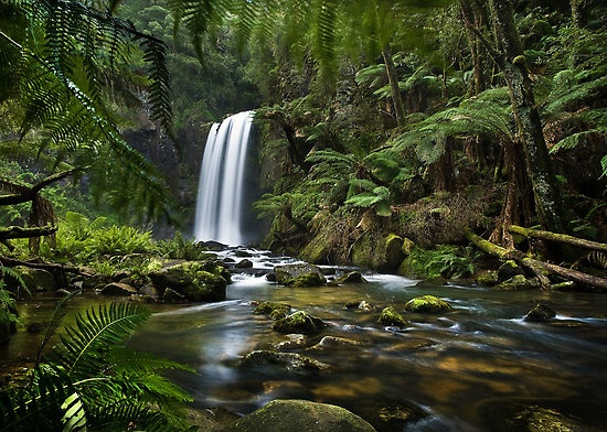 Spring Falls by John Dekker  The spring rains and the beautiful Aire River as it thunders over Hopetoun Falls in the Otways National Park, Victoria, Australia.