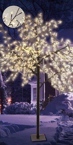 Strahlende Lichteffekte für Garten, Terrasse, oder Balkon. Für eine besonders festliche Beleuchtung! Sofort anschlussfertig!