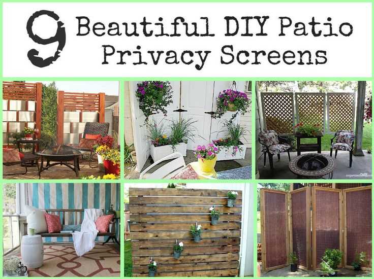 Diy outdoor privacy screen interesting ideas for home for What s a privacy screen