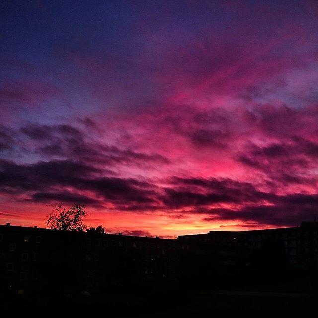 #zachodslonca #aarhus #aarhusv #visitdenmark #visitaarhus #sunset #kolorowo #pieknie #pazdziernik #october #wow #efterår #autumn #beautiful #purple #pink #orange #black #mangefarver