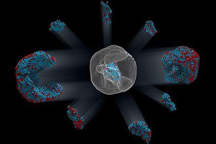 Впервые определены координаты всех атомов крупной частицы http://mnogomerie.ru/2017/02/02/vpervye-opredeleny-koordinaty-vseh-atomov-krypnoi-chasticy/  Физики из США и Великобритании определили координаты всех атомов, составляющих пробную железо-платиновую наночастицу. Соответствующее исследование опубликовано в журнале Nature, кратко о нем сообщает Американская ассоциация содействия развитию науки. Всего специалистам удалось определить координаты более 6,5 тысячи атомов железа и 16,6 тысячи…