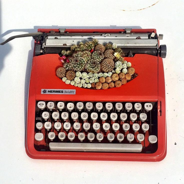 Succulents Make a Stunning Statement Inside Vintage Typewriters | The Creators Project