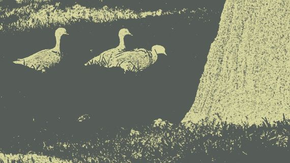 Ducks in Grass MauveGray by BlackbirdArtDesign on Etsy