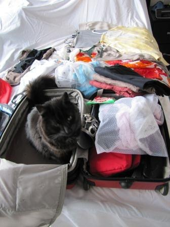 How to pack for plane travel: carry on and checked luggage « The Kiwi Travel Writer