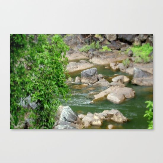 Freshwater Creek - Tropical Quensland Canvas Print
