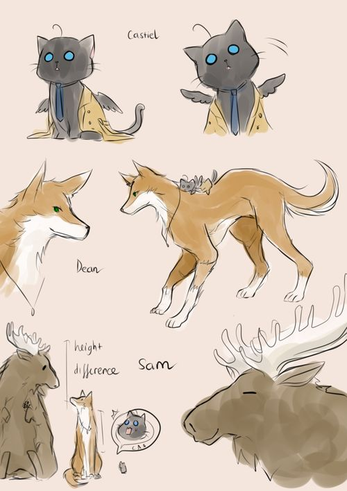 Castiel the cat, Dean the dog, and Sam the moose - Supernatural
