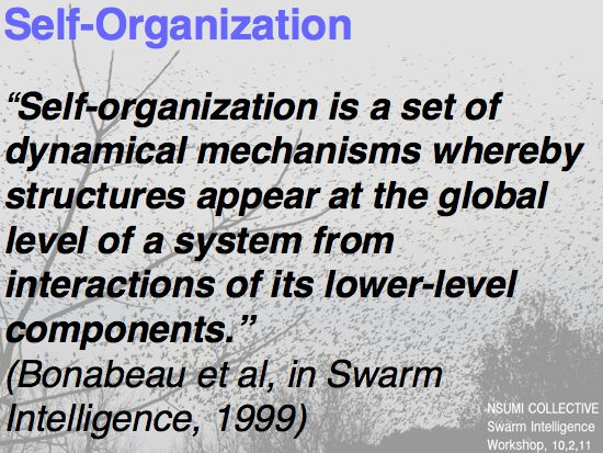 Swarm Intelligence: Is the Group Really Smarter? Swarm Intelligence, or Swarm Theory, is the collective behavior of decentralized, self-organizing systems: ants in a colony, movie raters at Rotten Tomatoes, participants in a market economy, etc. By observing these systems in nature, scientists have theorized that such systems harness a sort of leaderless, collective intelligence.