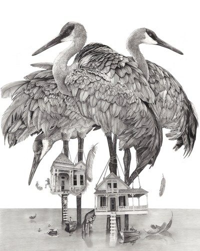 Sandhill Cranes Pencil Drawing Wall Art Print Wall Decor Birds | Theberrypress - Print On ...