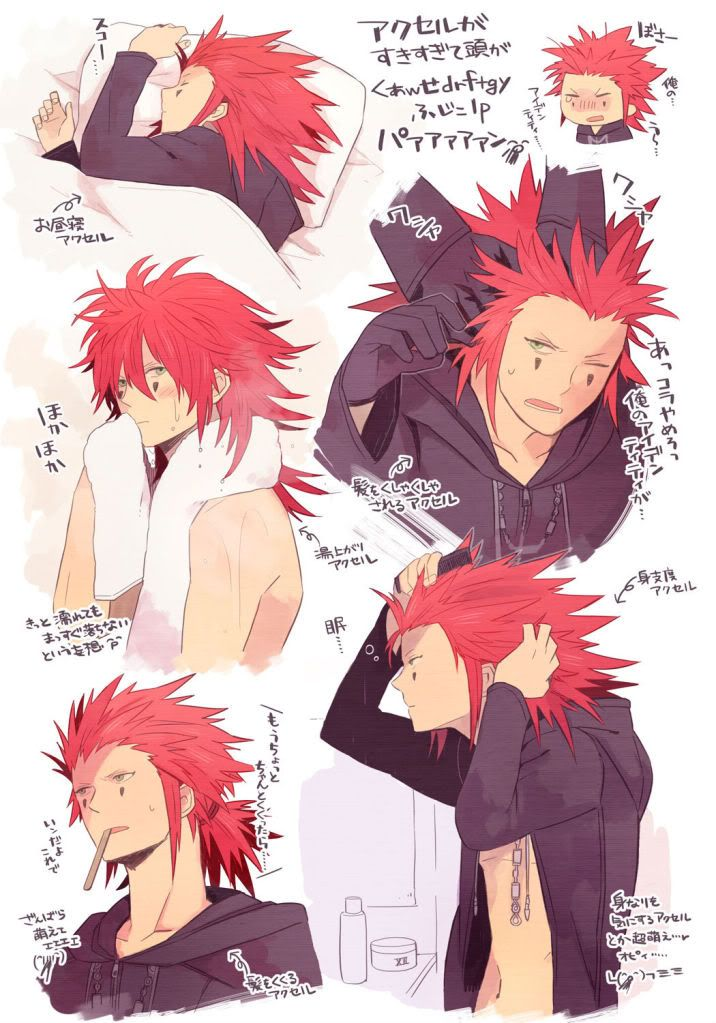 Axel and his hair, Kingdom Hearts II