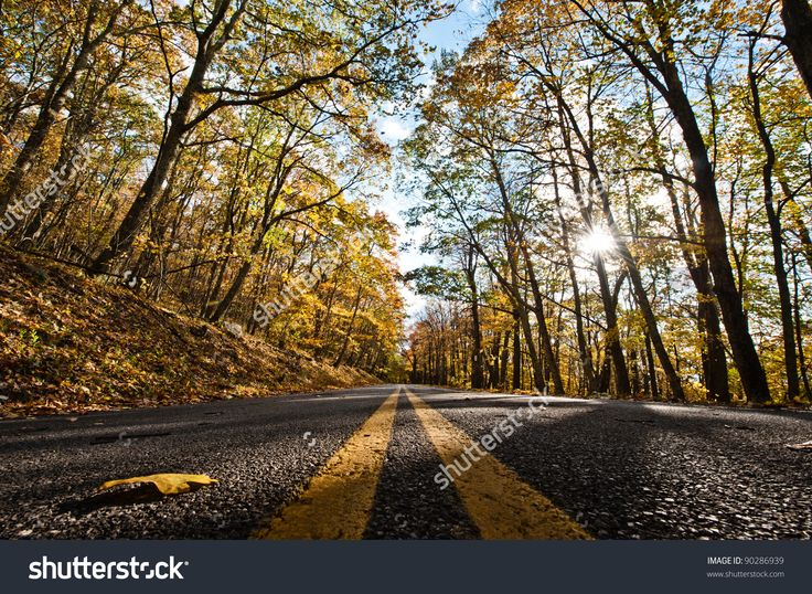 Lines In The Middle Of The Road During Fall. Stock Photo 90286939 : Shutterstock