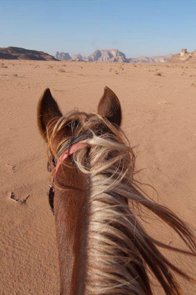 A cheval dans le désert Wadi Rum en Jordanie... Galops endiablés assurés !