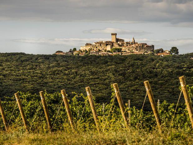 I vini di eccellenza dell'azienda vitivinicola Monteverro: una storia che parla di passione per la terra, per i paesaggi toscani e per la qualità del prodotto.