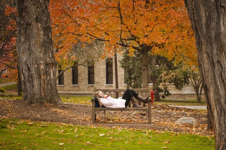 Fall at Colgate University, Hamilton, NY
