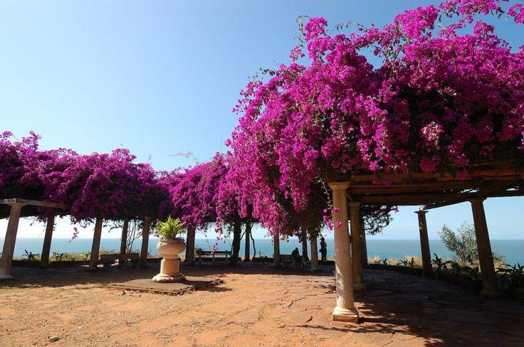Maputo is a cosmopolitan city with an undeniable coastal charm.