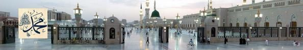 le blog journal-musulmane-reconvertie - Voici mon blog sur ma belle religion qu'est l'islam!!  #islam