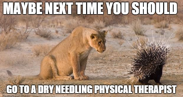 1 needle....versus 50 and guesswork. Physical therapy is vastly different than acupuncture.