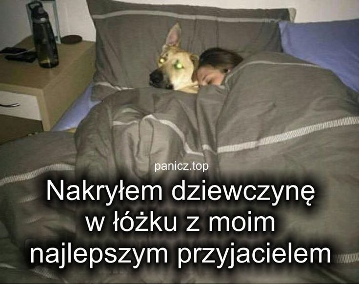 #zdrady 2017 #humor