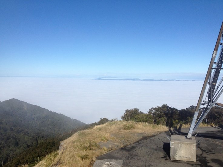 """View from top of Te Aroha """"mountain of Love"""" with the Waikato Candyflossed out by the fog.  Just the peaks of Mt.Pirongia in the distance. #greatwalker"""