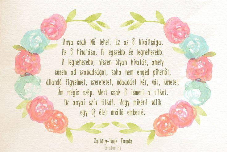 Csitáry-Hock Tamás idézet az anyák kiváltságáról.